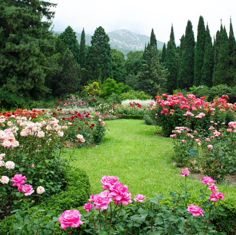 New Home Designs Latest Beautiful Gardens Designs Ideas: Plant And Garden Ideas For Your Home