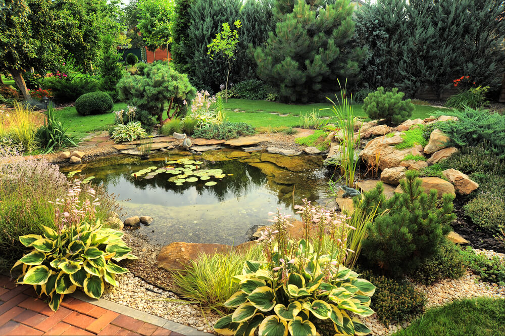 If you have the space for a large water garden like this one, it's a great way to add serenity to your backyard. However, water gardens can just as easily be made in a container.