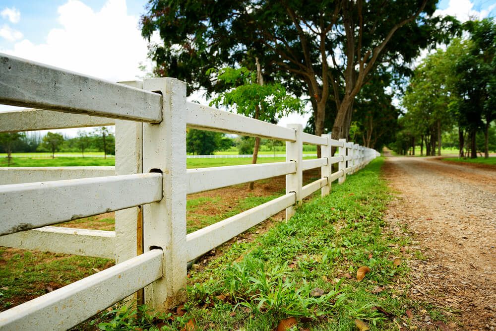 Classic White Post And Rail Fence Design Where The Rails Are Inserted Into Posts