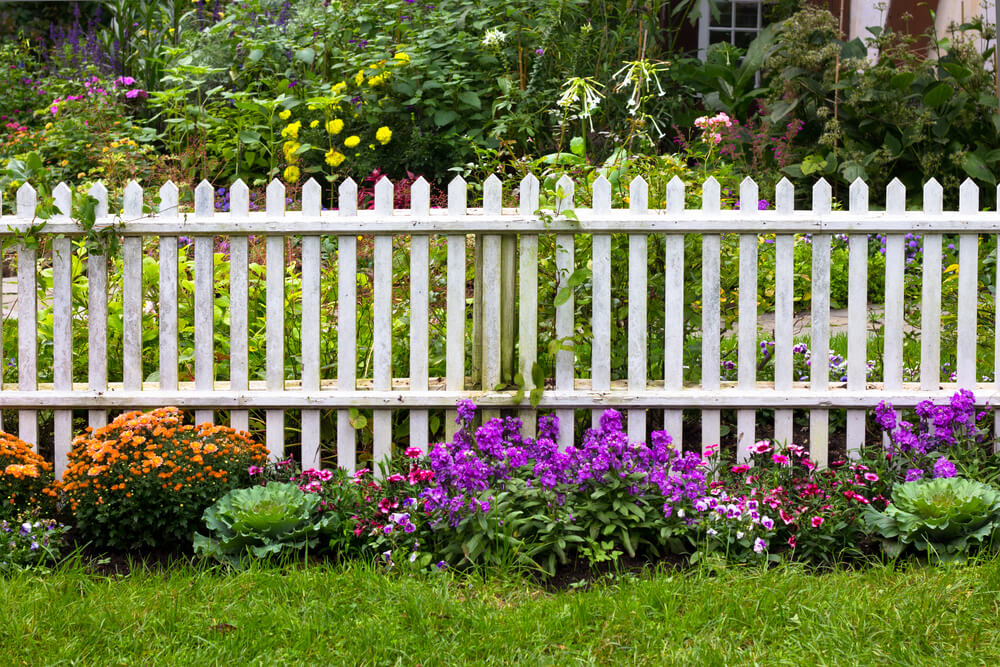 white picket fences look beautiful surrounded by greenery and flowers backyard fence ideas