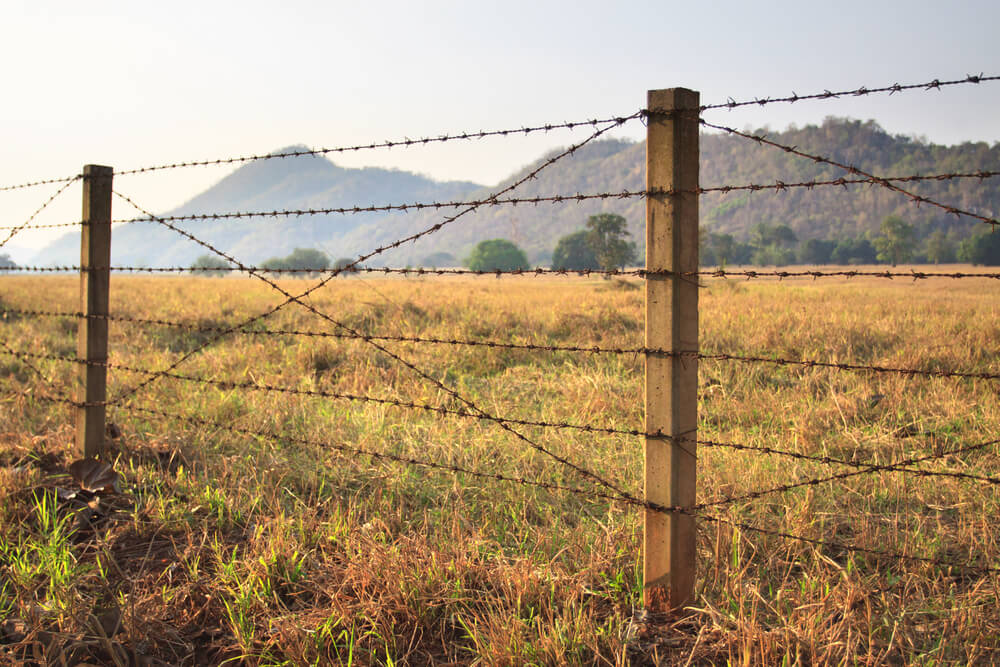 Barb Wire Fencing Is A Staple At Many Ranches And Farms. It Is A Cheap