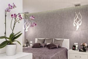 Use plants to brighten your home